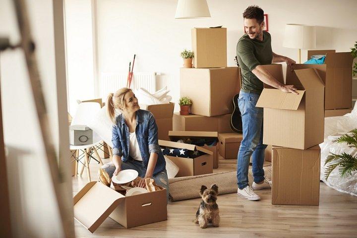 Chien d'appartement : bien faire son choix