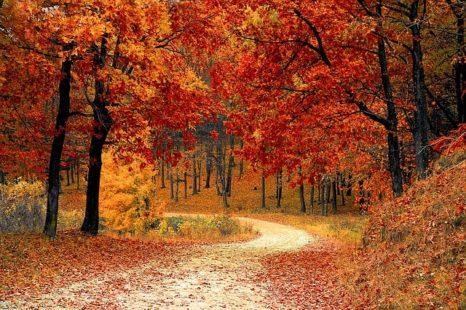 Signification de l' équinoxe d'automne