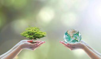 La journée mondiale de l'environnement : toutes les informations essentielles