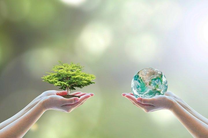 La journée mondiale de l'environnement : toutes les informations