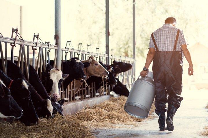 Photo of Le lait, bon ou mauvais pour la santé ?