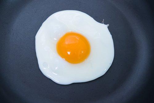 Blanc d'œuf : pourquoi est-il bon pour la santé ?