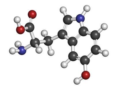Le griffonia, un véritable anti-dépresseur naturel