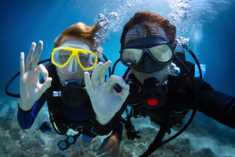La plongée pour découvrir la nature autrement