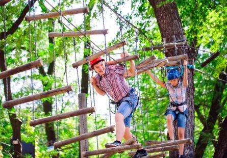 Accrobranche : pour évoluer en hauteur dans les arbres