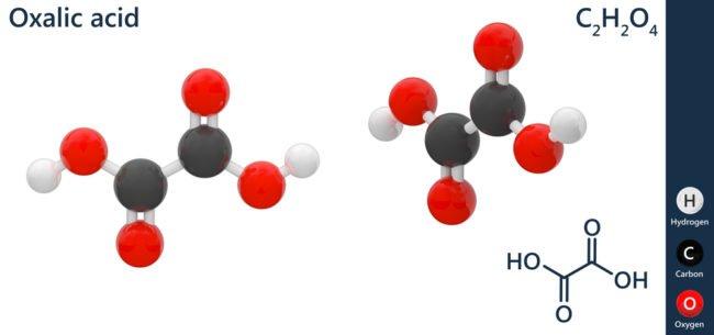 Faut-il avoir peur de l'acide oxalique ?