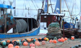 La surpêche : une pêche excessive menaçante