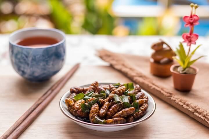 Les insectes : zoom sur ceux comestibles !