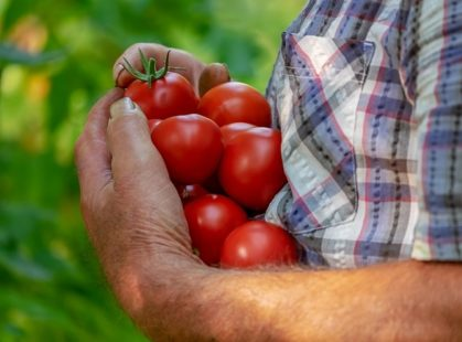 Les différents objectifs du mouvement Slow Food