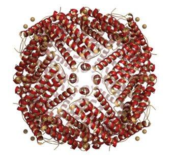 Ferritine élevée : un indicateur à prendre au sérieux