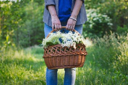 Photo of Fleur blanche : un parfum de pureté