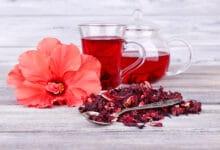 Photo of Tout sur les fleurs d'hibiscus