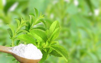 Photo of 10 alternatives naturelles au sucre blanc !