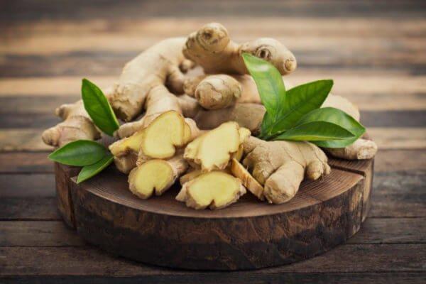 Antibiotiques naturels : gingembre