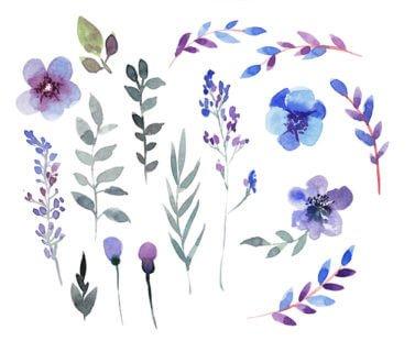 Violette : petite fleur délicate aux grandes vertus !