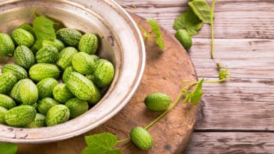 Photo of Le cucamelon : un fruit mi-pastèque mi-concombre