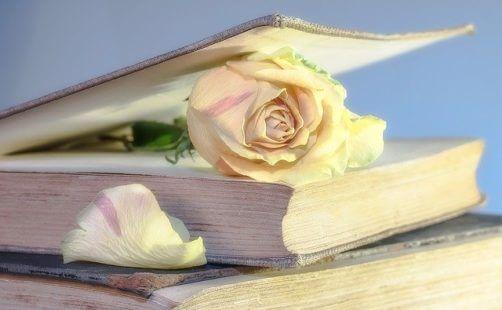 Livre sur le pouvoir des fleurs