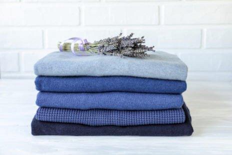 La lavande contre les mites des vêtements