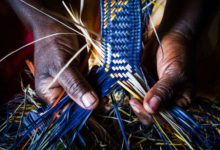 Photo of Le raphia : une fibre naturelle solide aux multiples utilisations