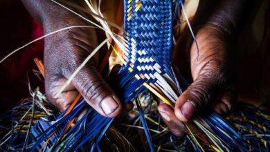 Photo of Le raphia : une fibre naturelle solide aux multiples utilisations