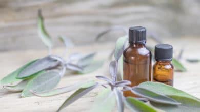 Photo of L'huile essentielle de sauge : une huile essentielle aux bienfaits intéressants