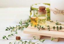 Photo of L'huile essentielle de thym : le remède contre les maux hivernaux