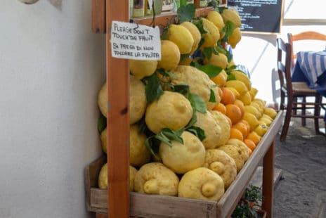 Pour faire du limoncello, il faut des bons citrons