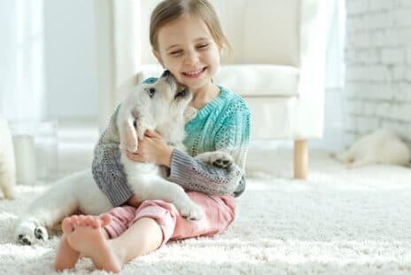 Animaux de compagnie et affection