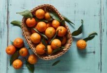 Photo of La tangerine : un agrume entre l'orange amère et la mandarine