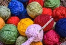 Photo of L'alpaga : une laine légère et soyeuse qui tient bien chaud