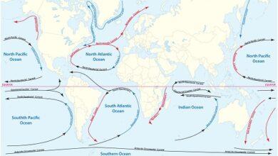 Photo of Au secours, les courants marins peuvent-ils s'arrêter ?