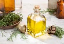 Photo of L'huile essentielle de cyprès : toutes les utilisations possibles de cette huile essentielle !