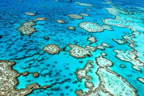 Barrière de corail vue du ciel