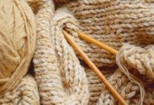 Photo of Chameau : une laine naturelle aux propriétés intéressantes