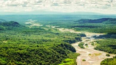 Photo of Que connaissez-vous de l'Amazonie ?