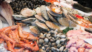 Photo of Comment bien choisir son poisson frais ?