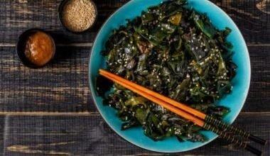 Photo of Les algues comestibles, des protéines végétales de choix