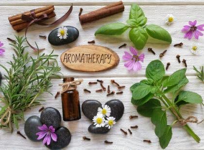L'aromathérapie, l'art de se soigner par les huiles essentielles