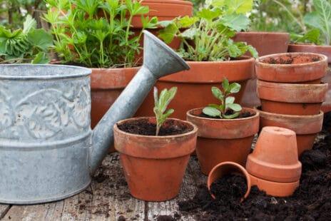 Comment fabriquer un réservoir d'eau pour les plantes ?