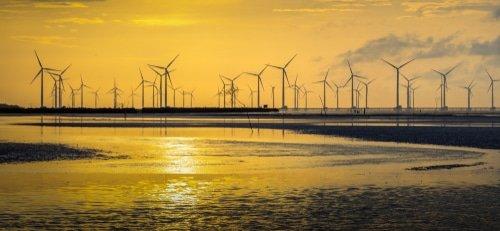 Panorama d'éoliennes en mer