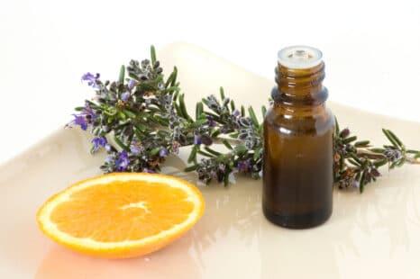 Parfum d'ambiance non toxique : orange, lavande, romarin...