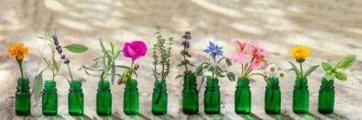 L'aromathérapie au service du bien-être