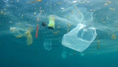 Photo of Plastique dans la mer, une catastrophe écologique mondiale