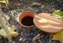 Photo of Pour une irrigation écologique, choisissez l'oya !