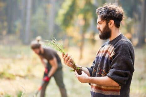 Une gestion responsable de la forêt