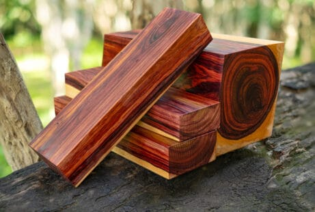 Morceaux de bois à la couleur caractéristique