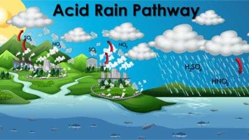 Comprendre le cycle des pluies acides