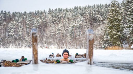 Homme se baignat dans un lac gelé entourré de neige et de canards colverts, bonnet sur la tête