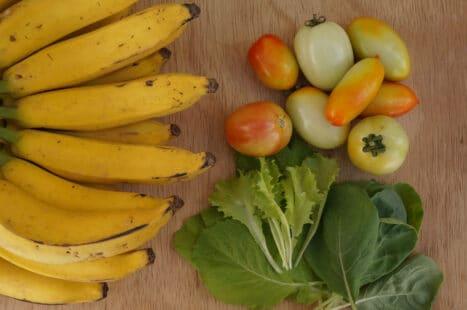 Fiates mûrir vos tomates vertes avec des bananes