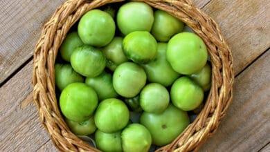 Panier en bois tressé contenant des petites tomates vertes